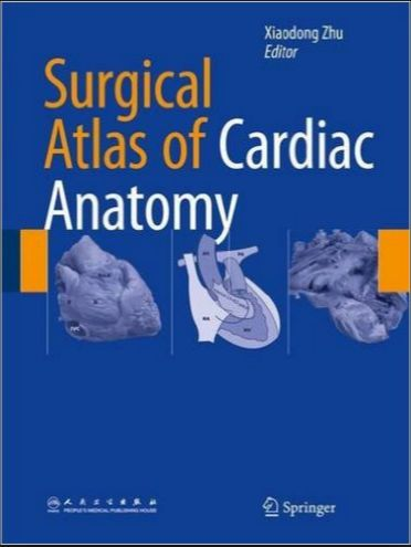 surgical anatomy and technique a pocket manual pdf free download