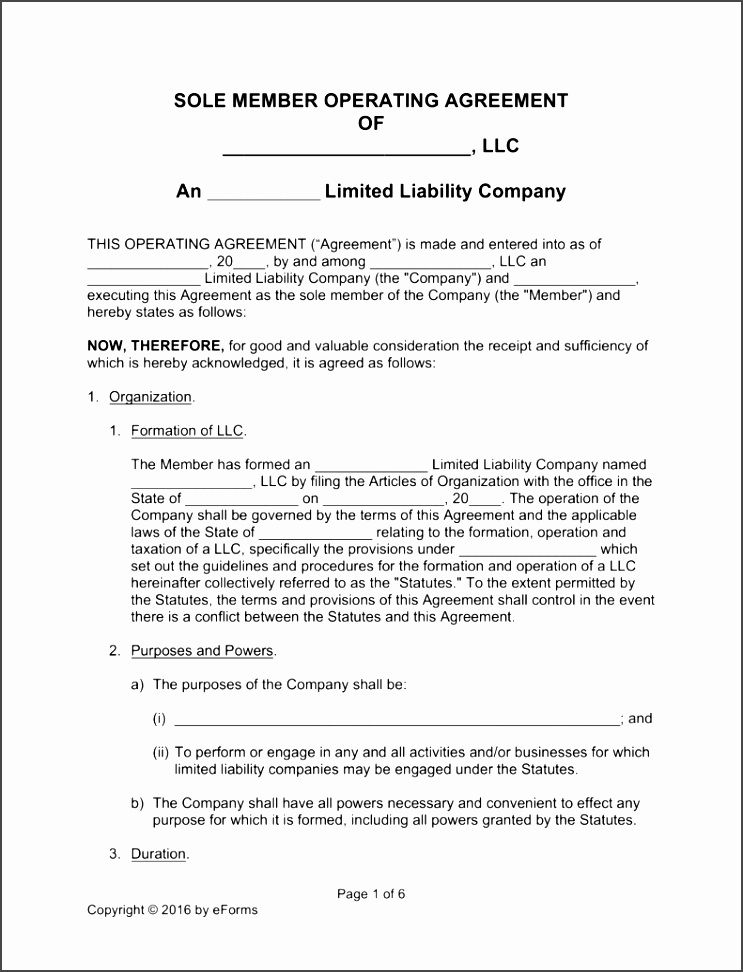 your limited liability company an operating manual pdf